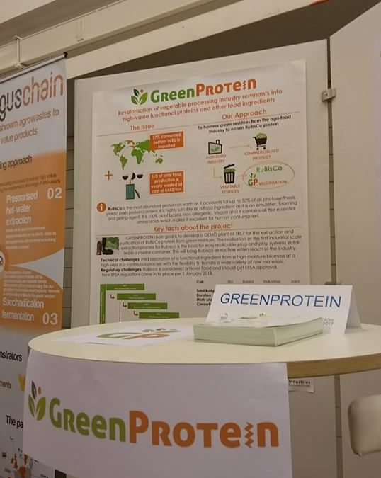 GreenProtein at the BBI-JU Stakeholder Forum 2017