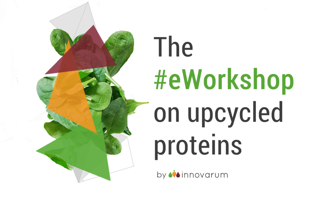 GreenProtein at the eWorkshop on Upcycled Proteins